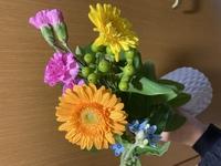 写真の植物名(4種)全て教えてください。