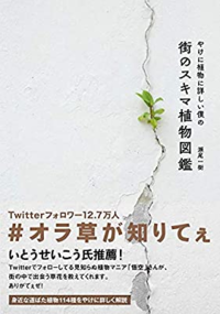 やけに植物に詳しい悟空という、ドラゴンボールの孫悟空とアイコン、名前、口調を使ってTwitterで草花を紹介して活動している方がいるのですが、今度本を出すようで、本には「Twitterフォロワー数12.7万人」や「悟空 さんが、街の中で出会う草花を教えてくれます。」などと書いてあります。  違ったら申し訳ないのですが、これって著作物を無断で営利目的に利用していることにはならないのでしょうか…...