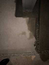 カーポート設置に伴い、コンクリートの削りをしてもらいました。 その際、ひび割れが発生してしまいました。 写真を参考にして頂きたいです。 業者に補修してもらう予定です。どのように補修すれば目立たなくな...