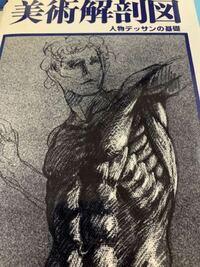 絵の描き方について質問です。 綺麗なイラストを描きたいので絵の練習をしているのですが、まずは骨格や筋肉の書き方を勉強しないとダメだとアドバイスを受けました。  解剖図の本を買ったのですが、どんな風に練習すれば良いかサッパリ分かりません。 まずは模写から始めれば良いのでしょうか?  こういう本です。