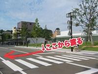 横断歩道では信号守れって言うが、 画像のように横断歩道から少し横に逸れた場所から渡れば道路の横断となり信号は関係ないから信号無視にはならないよね?  俺様の天才的で合理的なこの信号無視の方法は正しい...
