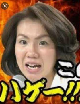 豊田真由子ってきもいんだが。 そこまで言って委員会に最近よく出てるが、「このはげー!!ちーがーうーだろー!!!」のイメージを払しょくしようと天然かわい子系のイメージを出そうとしてるのが、なおきも...