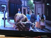 中国の時代劇をたくさん見ておりますが貴人を乗せるのは馬車しか見ておりませんでしたが牛車をはじめてみました。 ごくまれには牛車も使われていたと言う事ですね。