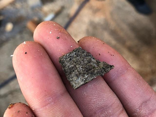 さきほどの質問の樹皮はほとんど剥がれていました 樹皮はこれです 少しだけ残ってました 針葉樹なのか、広葉樹なのかわかりますか?