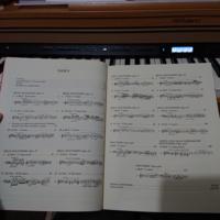 ショパンの夜想曲第20番 嬰ハ短調は この楽譜の中にあるのでしょうか?