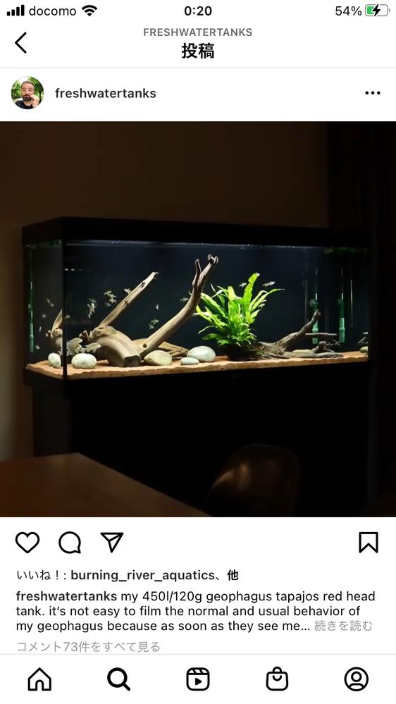 この流木の種類って何になりますか? 60水槽でラミレジィメインでやってます。 この感じ理想です。 なかなか日本の熱帯魚屋さんでは見かけない流木の種類ですよね。。