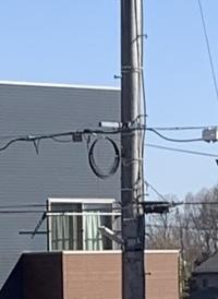 電柱の電線についての質問です。 昨日電力会社の方2名が来て、下の画像のように電線を追加して丸く束ねて帰りました。これは何の意味があるのでしょうか?ちなみに住宅地です。 宜しくお願いします。