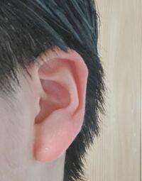 耳たぶについてです 小さい頃七福神の福耳に憧れて、引っ張ってたら 予想以上に耳たぶが伸びてしまいました。  ピアスを開けたかったのに、完全に「ピアスが似合わない耳たぶ」です。  この耳たぶ、皆さんは変に...