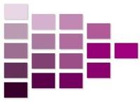 シニアシルバーカテの皆様はどんな「紫」がお好きですか?