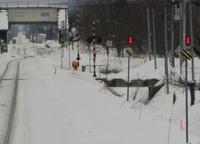 JR北海道の線路脇で見かけるこの標識  何を表しているものなんですか?