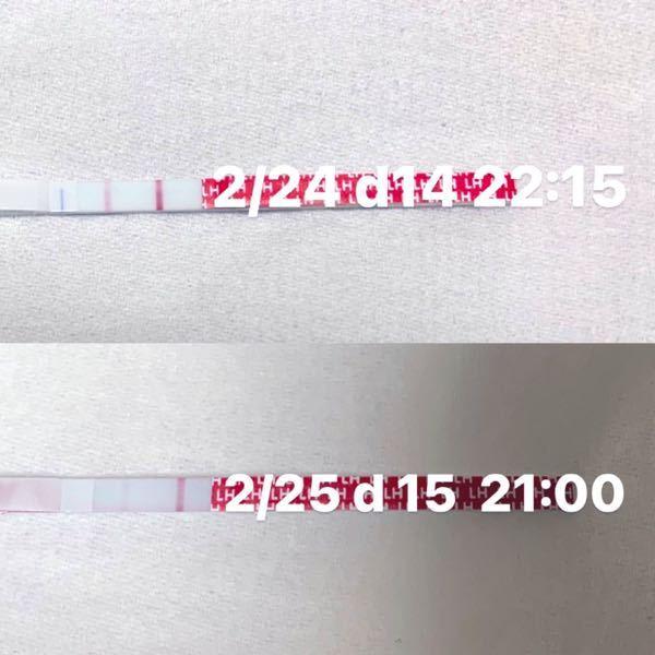 排卵検査薬について 陰性になった翌日夜の行為は間に合いますか? 画像を載せ忘れたので再度同じ質問を投稿しています、すみません。 一昨日2/24に届いたので使用開始したのですが、 これは2/...