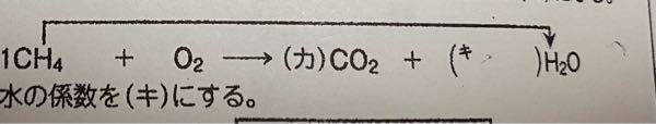 高1 化学 このかっこに入る数を教えてください! できれば説明もしていただけるとありがたいです。