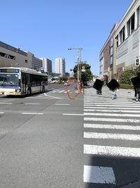 自転車の走行場所について。 こんにちは!基本的に自転車は歩道を走ってはいけない決まりだとは聞いたことありますが このように歩道が広い場所では自転車も通って良いのでしょうか? 本来は赤い丸で囲った部分...