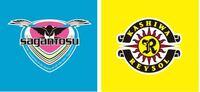 J1リーグ第5節のホーム サガン鳥栖 vs 柏レイソル の予想スコアをお願いします。⚽️✨