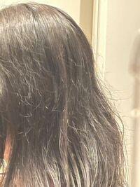 髪がこの写真のような感じで切れ毛(?)のようなものが沢山あって髪を下ろして外にでたりすることができません。 どのようなヘアケアをしたら治るでしょうか。 縮毛矯正も考えていますが、効くでしょうか、 過去に1度縮毛矯正は当てています。