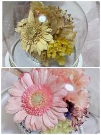 レカンフラワー 花束加工 色褪せ   2年前に、職場の退職時にいただいた大切な花束をレカンフラワーという加工をしてもらいました。 そのときに半永久的に枯れないと伺っていましたが、今日久しぶりに中身を見た...