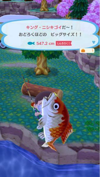 どうぶつの森ポケットキャンプです。 こういうレアな魚って売っちゃうべきですかね?