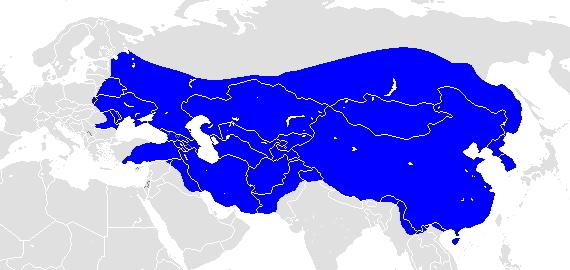 モンゴル帝国についてです。 蒼き狼と言われますが、画像の領土が狼に見えるからですか? とんでもなく広い領土を持った野心の有る人達だから狼の様な印象を例えているんですか? 教えてください。