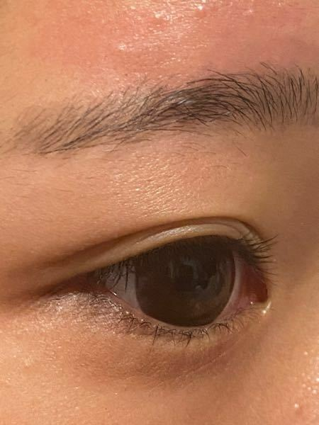 中学1年生です。明日身だしなみ検査があって眉毛のチェックがあります。この画像の眉毛は抜いています。私の中学校では抜いてもダメだしカットもダメだし剃ってもダメです。これでいけるでしょうか。