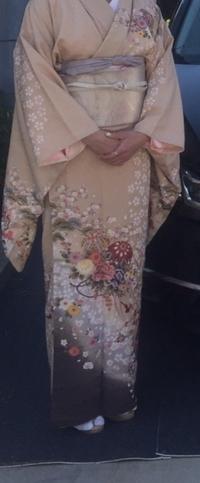 このお着物は何歳まで着られそうですか? 30代前半までですかね? 写真だと小振袖ですが訪問着のお袖と思って、 ご回答くださいませ
