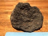 一つの溶岩石に、2種類の水草を 活着させることは出来るのでしょうか? アヌビアス・ナナとウィローモスを活着 させたいと思っています。