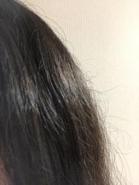 ドライヤーの購入で迷っています。  レプロナイザー4Dかリファで迷っています。 どちらのがいいのでしょうか? それぞれの使用してみて、よかったところなどを教えてください。  因みに私の髪は、多毛でパサパサしてしまっているのでそれを改善できる方を購入したいと思っています。 写真のような髪のパサつきの改善をしたいと思っています。  どちらも値段は高いですが、どうせならいいものを購...