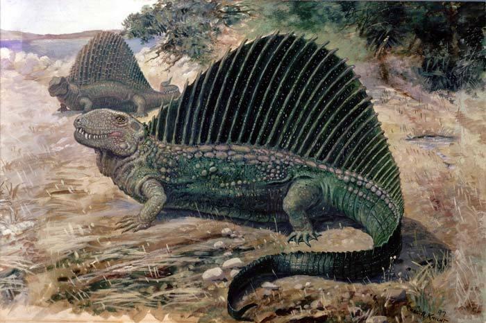 なぜ現在のワニやトカゲ等の爬虫類にはディメトロドンの様な帆を持った動物が存在しないのでしょうか?