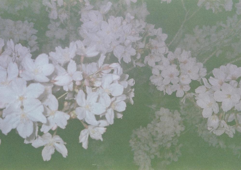 メルカリで、PENTAXESPIO90MCを購入したのですが、写真と現像したところ全て下の画像のように暗く、白く写ってしまいました。 フラッシュも炊いていましたが、暗すぎて現像できなかったものもありました。 これは、カメラの調子が悪いのでしょうか。 露出は勝手に調節してくれるようです。