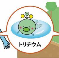 原発汚染処理水安全PR トリチウムがゆるキャラ設定された事について皆さんどう思いますか?  https://www.tokyo-np.co.jp/article/97830