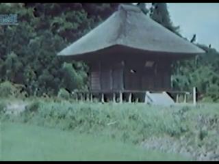 この画像で、どこ寺院の建物か分かる方お願いします。