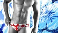 夏に海とかプールでこういう水着はどう思いますか? 大学生です