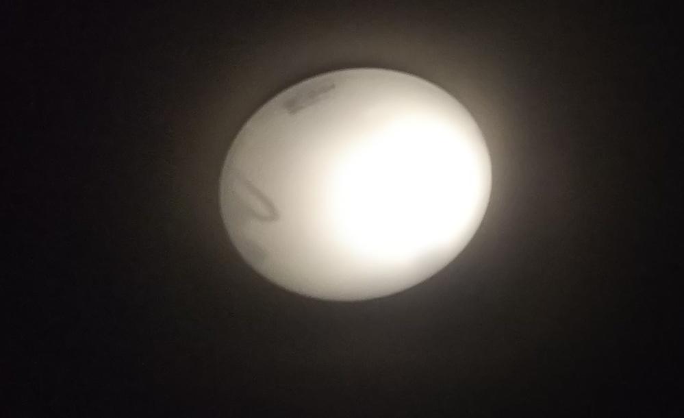 寝る前に気づいてしまったんですけどこの影はゴキブリの頭の影ですか?