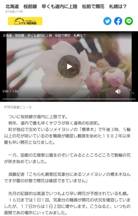 札幌市西区宮の沢駅裏の街路樹は既に桜が開花してますが、それは開花宣言にはならないのでしょうか?