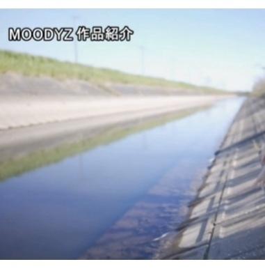 こういう水路にザリガニはいること多いですか? また、そのザリガニを捕獲し持ち帰っても問題はないのでしょうか?