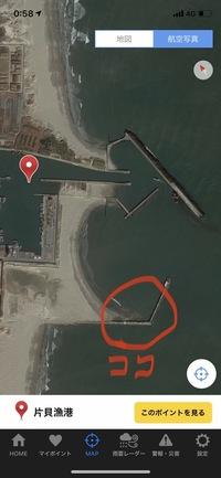 千葉の九十九里町にある片貝港新堤?は堤防から釣りは出来ますか?
