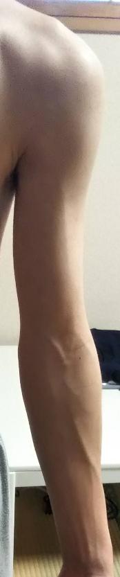 女の人に質問です。男の人の腕ですがこの腕は筋肉があるように見えますか?細いように見えますか?普通サイズに見えますか?