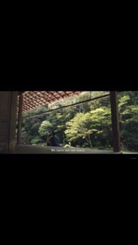 この写真は京都のどこですか??