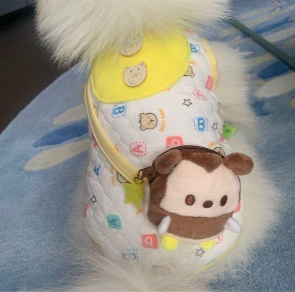 犬のこの洋服が欲しいんですがどこのかわかりますか? ちなみに中国の方のsnsに載っていました。
