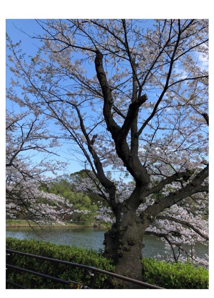 この場所がどこか知りたいです。 神奈川県川崎市か横浜市鶴見区にあると思うのですが。