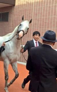 まさか天皇賞春まで 牝馬が勝つなんて事… 今年ならアリじゃんな ですか?