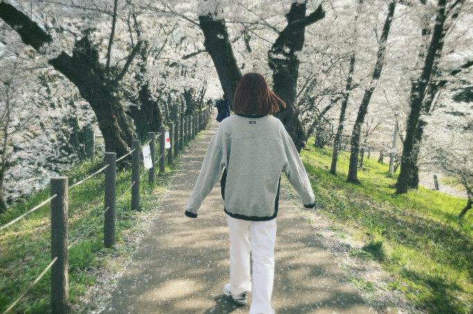 皆さんのところは桜咲いてますか?