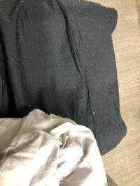 ニトリの布団カバーを家の洗濯機にかけたら白いモロモロのほこりみたいなのがたくさんでてきました! これはどこからこんなに出てきてしまったんでしょうか(>_<)   雪かよってくらいたくさんついてとれません・・・  服にもつきまくってどうしようもありません(>_<)  この画像は先程撮ったんですが、実際はもっとたくさんついてしまっています(>_<)(>_...