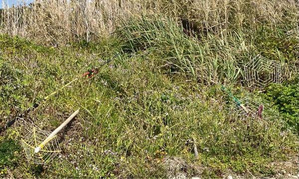 海の近くの草の上に釣竿のようなものに蜘蛛の巣型の何かがついている道具?が数本置いてありました これは何に使うものでしょうか?