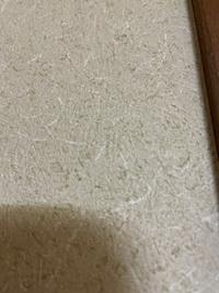 和室の壁を洋室にdiyしたいため、のり付き壁紙に張り替えようと思うのですがこの壁紙は繊維壁ですか? もし繊維壁なら下処理が必要か教えてください。