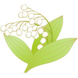 本日5月1日はスズランの日です(*˙˘˙*) 皆さんスズランの花は好きですか?