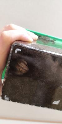 カブトムシの幼虫が2日間動きません。 死んでしまったのか確かめようにも、前桶になってるだけなら掘り起こしてもダメだと思い何も出来ずにそのまま放置してるのですが… 死んでるかどうかの判断ってどうすれば良いのでしょう? カブトムシを卵から成長させるのが初めてでわからないことだらけで… 見にくくて無意味かと思いますが写真添付します。 このまま様子見で良いかわかる方いらっしゃれば教えてほしいです。