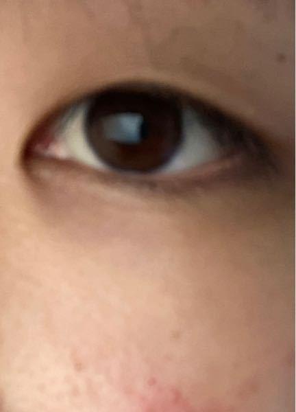 肌も目も汚くてすみません。 これは蒙古襞凄いほうですよね?不器用なのま相まって、上手く二重にできません…。 二重に慣れる希望はありますか?また、どのようなやり方で二重にしているか教えて頂きたいです。