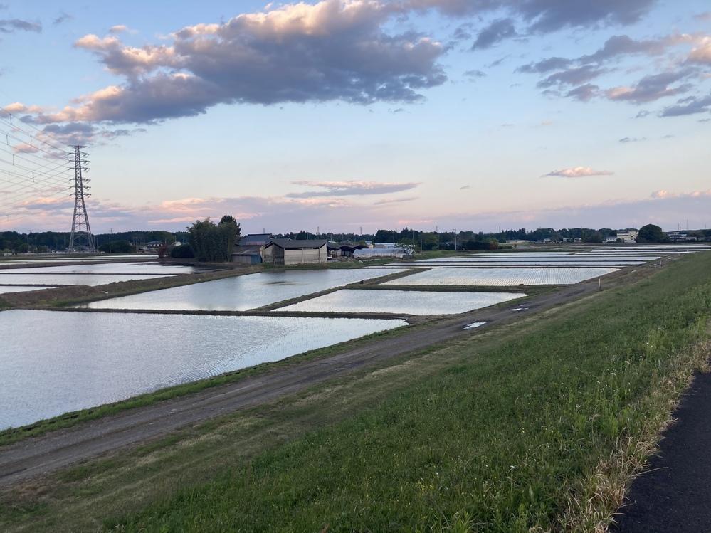 見てみて! 田んぼに水が入ってあたり一面湖の様! 空を映し出す一面の水田! 黄昏時がパシャリ! 幻想的的で美しい海にも勝らない光景じゃないですか!? 家の前の田。
