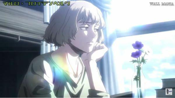 進撃の巨人 戦地に赴いたマルロを想うヒッチの傍らの花瓶に活けている花の名前と、花言葉を教えて欲しいです。 (画像参照) ※YouTubeから引用しました