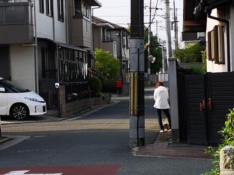 近所のおばさんの行動が分かりません。 毎朝6時頃出勤時にいつも私の家の近くにいる近所のおばさんのお話しです。 私の家の玄関を出たらすぐ左側に電信柱があって、よく犬がおしっこをかけるんです。 ポストを取り出す際に電信柱の前の地面を踏むので、結構気持ち悪いんです。 最初は、その電柱付近にいた犬の散歩(手綱無し)をしているおばさんに 『ここでおしっこさせないで下さい』と注意したことがあります。 でもおばさん曰く、『私の犬ではない』と言うので、こちらとしては証拠もないので『分かりました』と引き下がりました。 それからも毎朝私の家の前付近を手綱を付けず立っているんです。 まぁ犬の散歩は毎日ですが。 最初は、ゴミ出しとか出勤時に挨拶をしていたんですが、挨拶をする度に、手綱を付けていない小型犬が、わんわん吠えてこちらに向かってくるんです。 小型犬といえども、噛まれたら嫌でしょう。 私も吠えるアホな犬(躾ができていないから飼い主が悪いんですが)は苦手で、何度か『嫌や!嫌や!』と言って、後ずさりしていました。 朝から頭がカーと熱くなり、血圧が上がるのが分かります。その度に朝っぱらから気分が悪くなります。 そのうち私の顔が、こわばっているのが分かったのか、ゴミ出し出勤時は、おばさんは、その道路の私の家の電信柱以外の電信柱に隠れるようになり、しかもいつも私から見て後ろ向きに立つようになりました。 しまいには、私が家から出てきたら、手綱をしていない犬を抱き上げ、自分の家の方に歩き出します。 私としては、そのおばさんの犬が面倒だから会いたくない、関わりたくないので逃げてるならほっておきます。 ただ、逃げるなら、その時間に犬の散歩(手綱無し)をしなきゃいいでしょう。お互いのために。 わざと私の視線に入るように行動しているようで、気分が悪いです。 先日も出勤する際、あのおばさんはいないとホッとしたのも束の間、車でいつも曲がる道があるんですが、その通りの真ん中より車一台通れるかのとこに立っているんです。 なんなん?? って思いません??どうしてほしいの?ただそこにいるだけなら、避けるなら道はいくらでもあるから、別の道で散歩すればいいじゃない!! もうストレスです。朝から超ストレスです。前からだけどあのおばさんを見るだけでストレスになってしまった。。。 そのような事があってから道を変えて出勤しています。 休みの日、近所に用があって、そのおばさんの家の前を通らなければならない時、おばさんはいなかったのに家から犬をつれて出てきたんです。 偶然?? もしかしてずっと家から見られてる?? 自意識過剰??そういう気分になります。 おばさんの心持ちを疑います。 よく分かりません。 誰に相談したらいいのか分からず、知恵袋にいたりました。 このような変なおばさん(ん?私が変なんでしょうか?)みたいなの皆さんの付近にいませんか? どういう風に対応されているのかも教えてほしいです。 長らく読んで頂きありがとうございます。